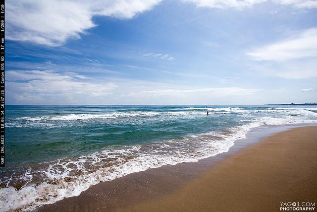Costa Rica Beach Landscape
