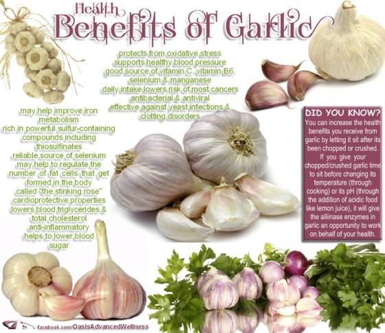 Garlic Health Benefits