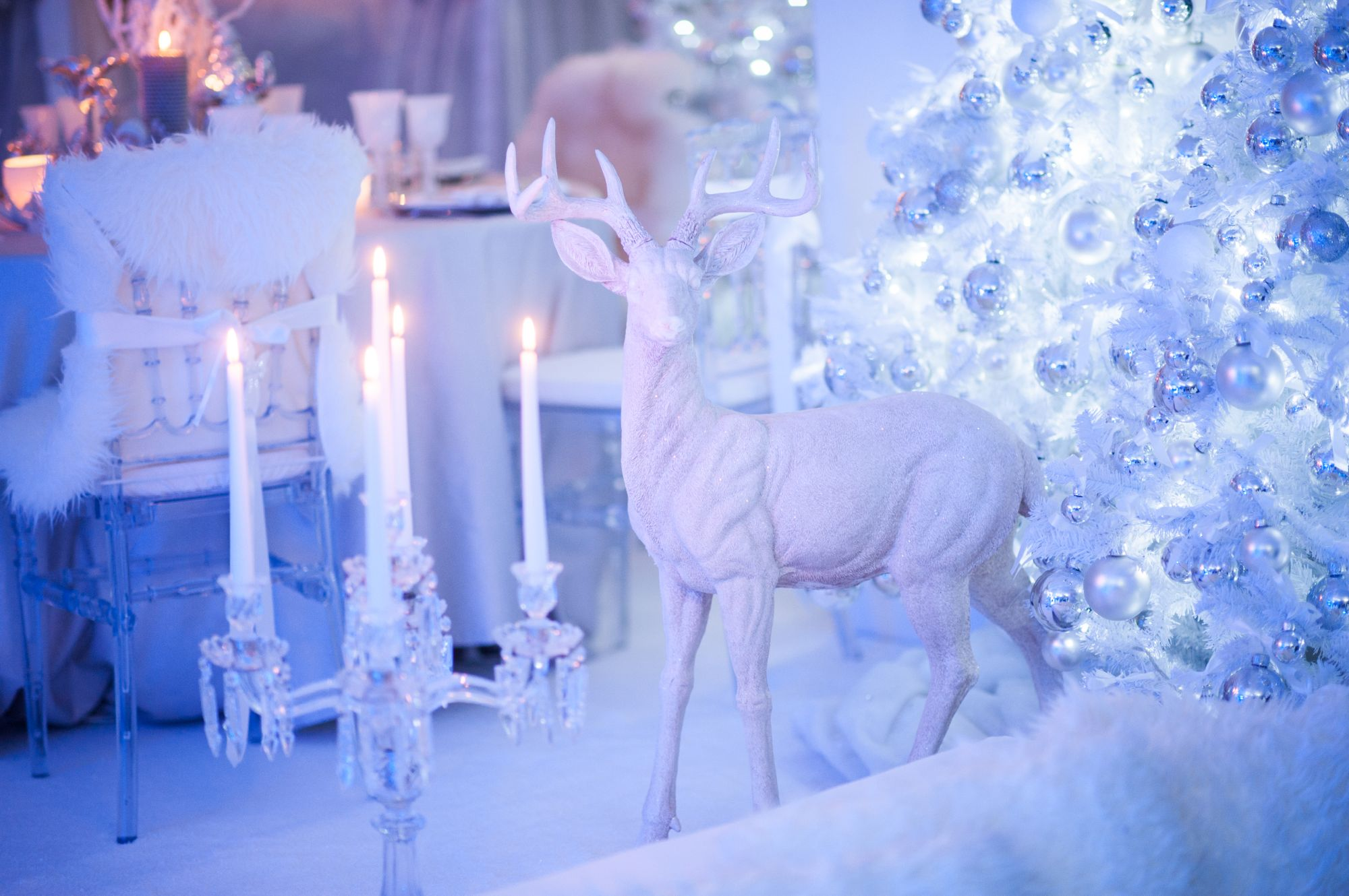 5 Quirky Theme Ideas For Your Winter Event Yahire