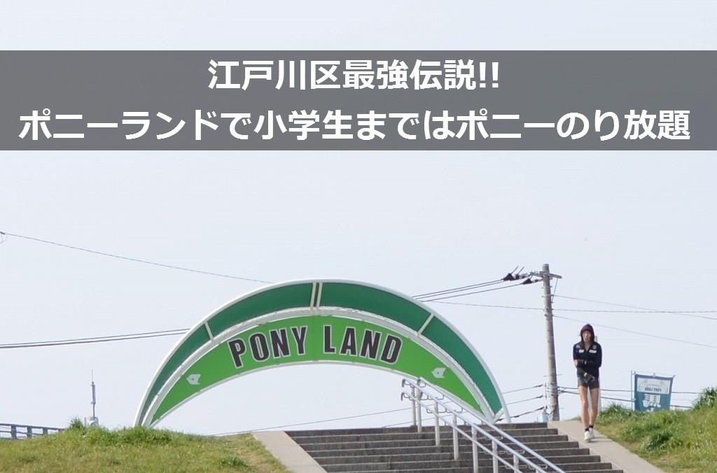 ポニー 江戸川