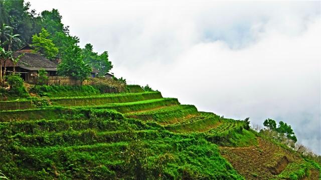 Vietnam boucle de Ha Giang Du Gia