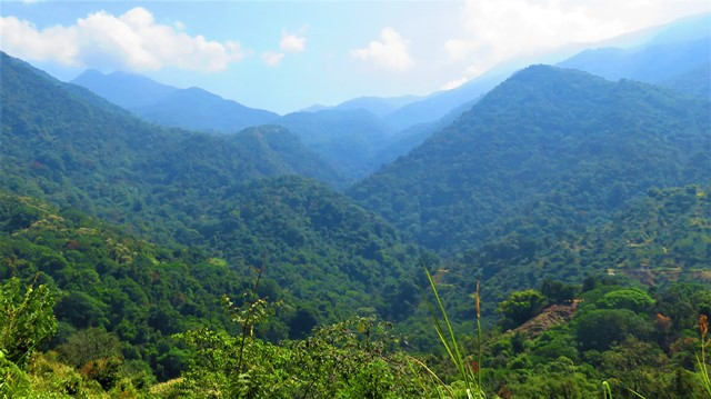 Colombie Minca panorama