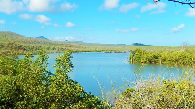 Galapagos ile Floreana