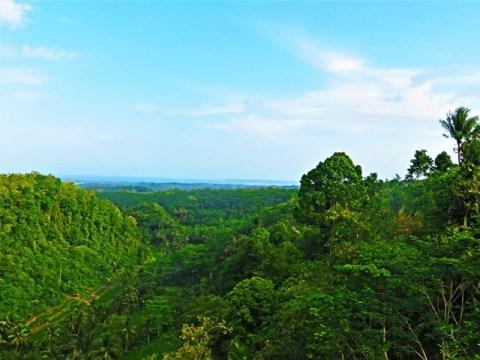 Java Batu Karas Green Valley