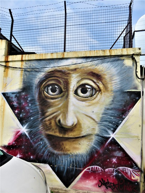 Malaisie George Town street art singe