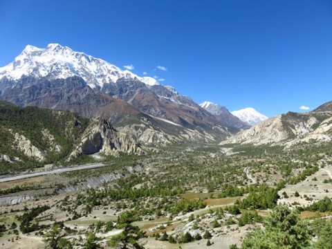 Népal Trek Circuit des Annapurnas Manang