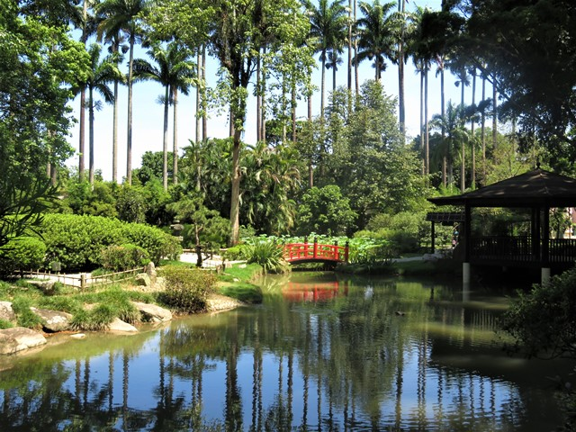 Brésil Rio de Janeiro Jardin Botanique