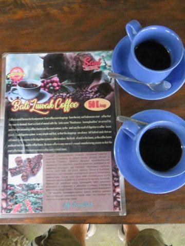 Bali Ubud café luwak