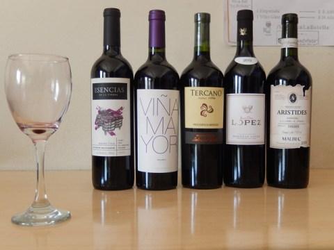 Argentine Mendoza vin