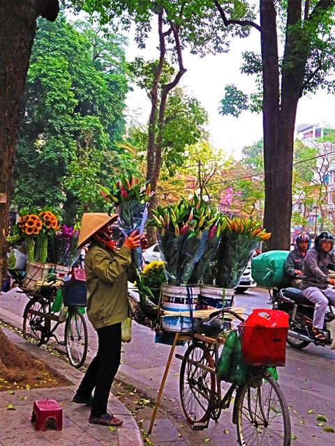 Vietnam Hanoï vendeuse fleurs