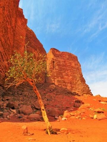 Jordanie désert Wadi Rum canyon