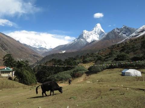 Népal Trek de l'Everest Tengboche