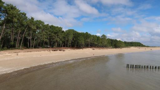 Oléron plage gatseau