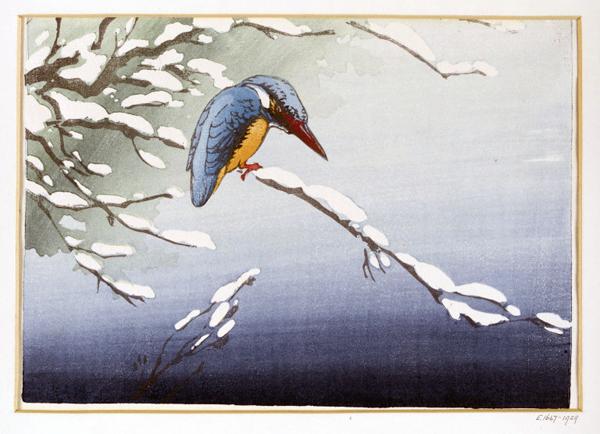 Kingfisher, Allen W. Seaby, 1929