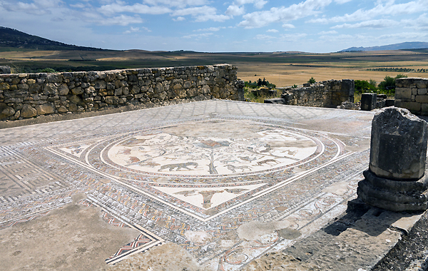 Volubilis, Morocco - one of many superb mosaic floors