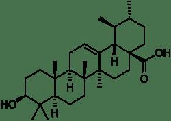 acide-ursolique-naturabolic