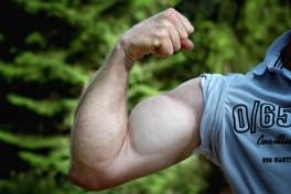 prise-de-force-musculation