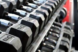 exercices-debutants-musculation