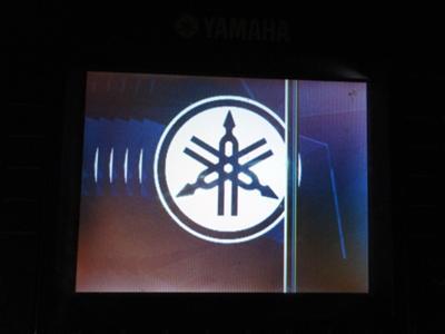 Yamaha PSR-S900 LCD Display Going Bad
