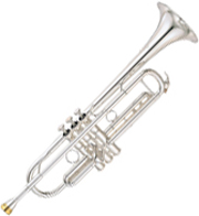 The origins of the Trumpe:The relatives of the trumpet
