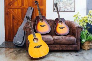 YamahaBlog_FS-TA試用吉他們
