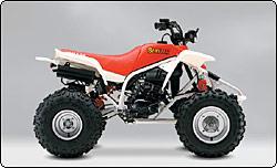 1990 yamaha moto 4 350 wiring diagram excretory system basic 1989 250 manual e books atv history1989 19