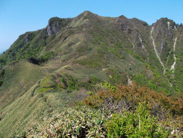伊予富士 - いよふじ:標高1,756m-中国・四国:石鎚山地 - Yamakei Online / 山と溪谷社