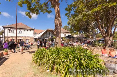 Yanchep Inn-Yanchep National Park-Yanchep-_MG_5728-MADCAT-Photography