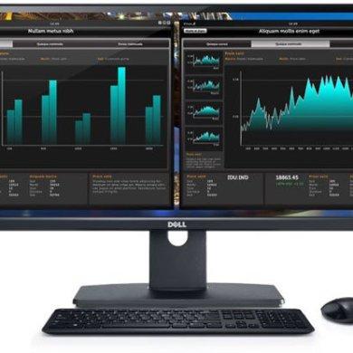 Dell UltraSharp U2913WM 4