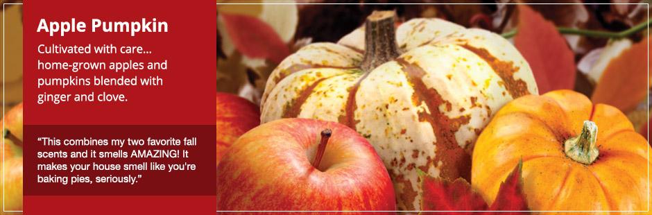 Image result for yankee apple pumpkin