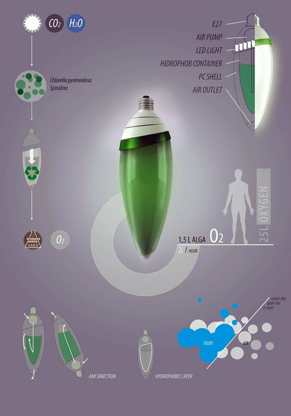 Living Light Bulbs  Yanko Design