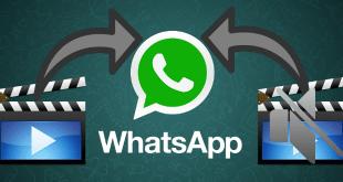 WhatsApp, WhatsApp Video Ses Sorunu, WhatsApp Videoları Sessiz, WhatsApp Videolarından Ses gelmiyor,