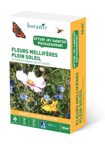 Des gestes pour aider nos amies les abeilles
