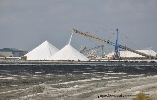 538cc4c17962 La récolte deviendra ensuite du gros sel, du sel fin ou du sel brut… qui  finit sur votre table si vous êtes adepte du sel de la Baleine!