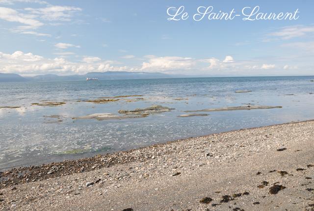 L'Ile aux Lievres