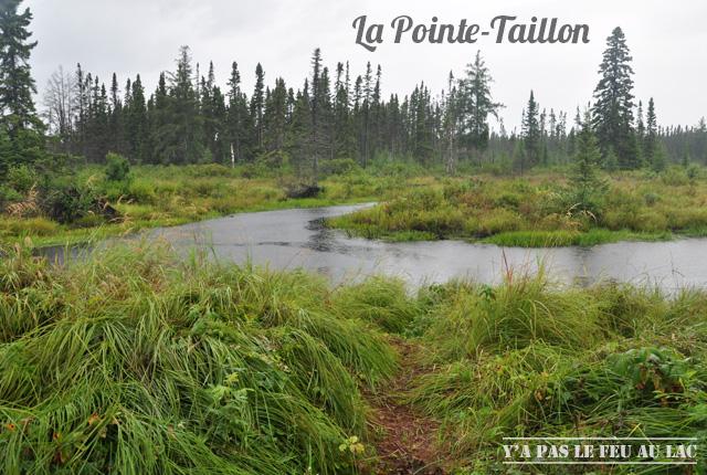 Lac Saint-Jean La Pointe Taillon