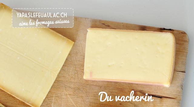 Vacherin: fromages suisses