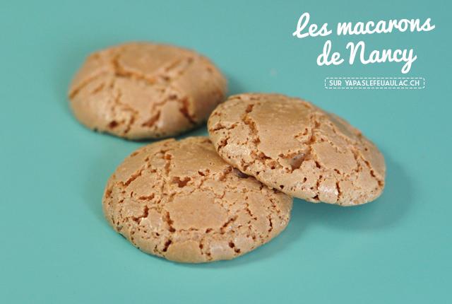https://i0.wp.com/www.yapaslefeuaulac.ch/wp-content/uploads/2016/03/Macarons-de-Nancy-Sp%C3%A9cialit%C3%A9s-de-Lorraine-3.jpg?w=640&ssl=1