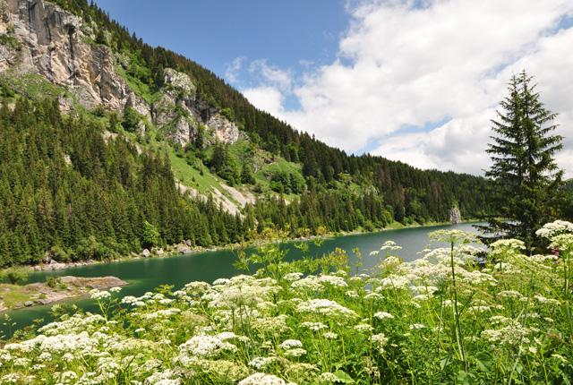 Le Lac Tanay en Valais
