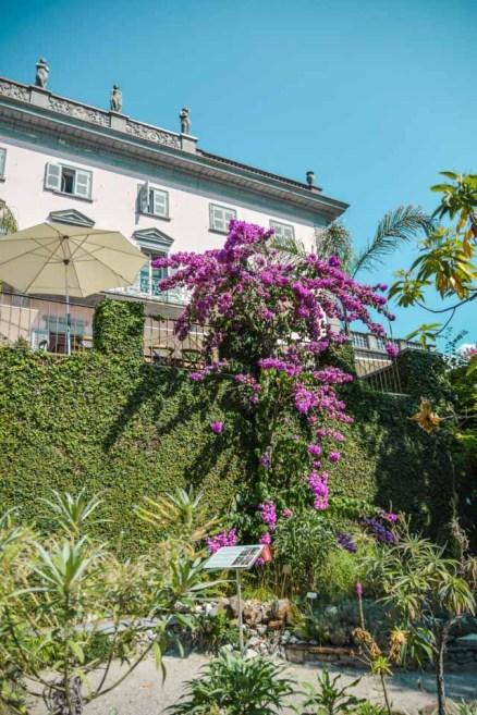 jardin-botanique-tessin-ile-brissago-14