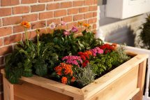 Elevated Garden Planter Boxes - Yardcraft