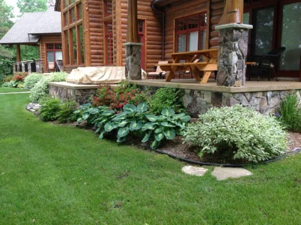stairs plants shrubs - landscape