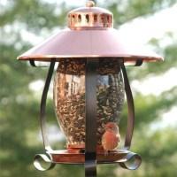 Coppertop Lantern Bird Feeder - Yard Envy