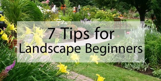 7 tips landscaping beginners