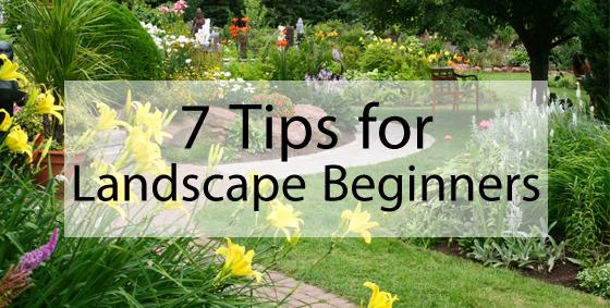 7 tips landscaping beginners