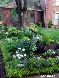 Landscaping Ideas > Shade Garden | YardShare.com