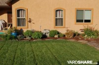 Landscaping Ideas > Rural Back Yard in Central CA ...