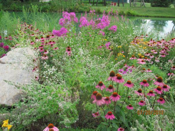 small butterfly garden ideas
