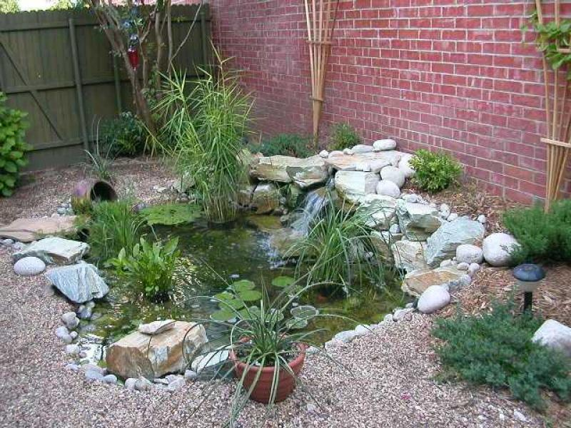 Water Garden Ideas Photos Perfect Home And Garden Design