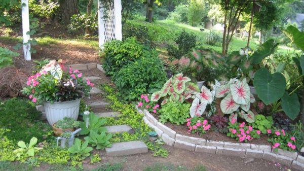 landscaping sidewalk ideas